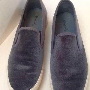 bllue velvet sneaker very cute.  Pretty blue
